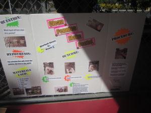 Best San Ramon Preschools