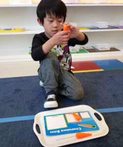 There is a Learn And Play Montessori preschool in South Fremont now.