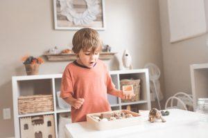 Fremont Montessori